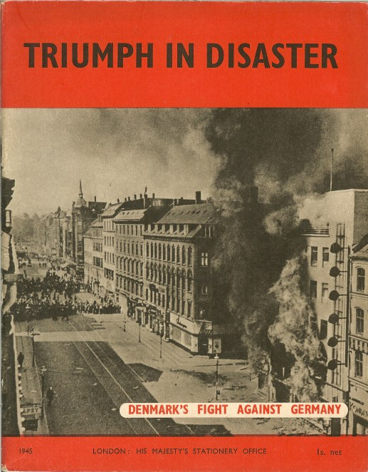 Image for TRIUMPH IN DISASTER: DENMARK'S FIGHT AGAINST GERMANY