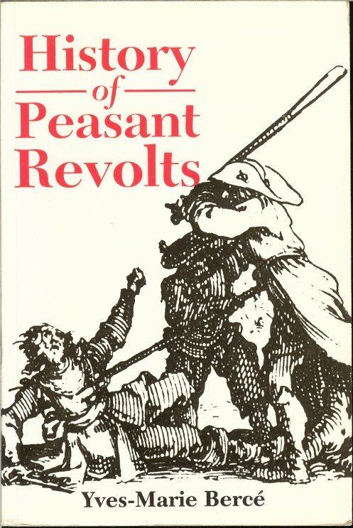 Image for HISTORY OF PEASANT REVOLTS: THE SOCIAL ORIGINS OF REBELLION IN EARLY MODERN FRANCE