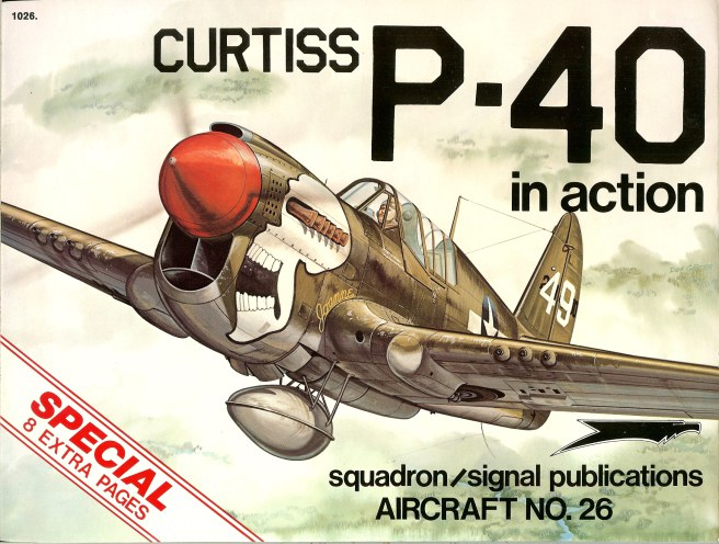 Image for CURTISS P-40 IN ACTION