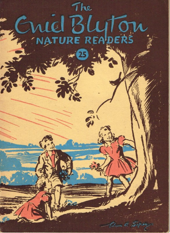 Image for THE ENID BLYTON NATURE READERS 25
