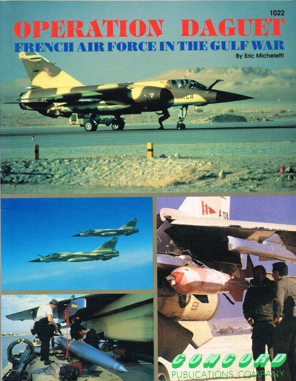 Image for OPERATION DAGUET: FRENCH AIR FORCE IN THE GULF WAR