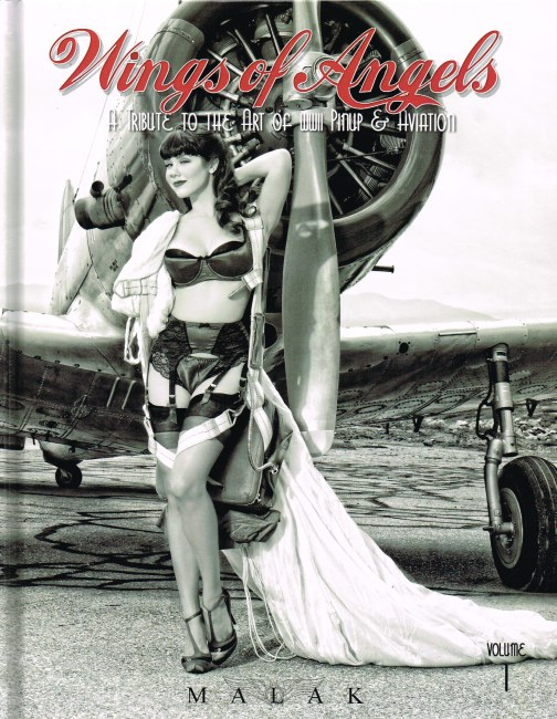 Image for WINGS OF ANGELS VOLUME 1: A TRIBUTE TO THE ART OF WWII PINUP & AVIATION