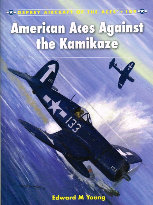 Image for AMERICAN ACES AGAINST THE KAMIKAZE