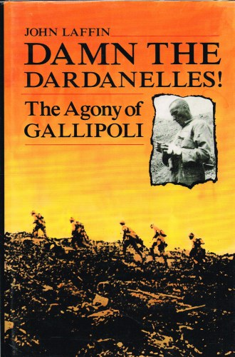 Image for DAMN THE DARDANELLES! THE AGONY OF GALLIPOLI