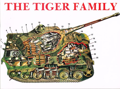 Image for THE TIGER FAMILY