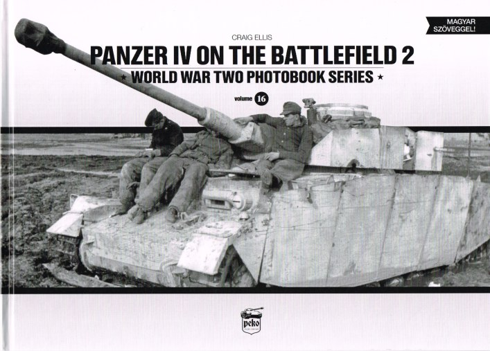 Image for PANZER IV ON THE BATTLEFIELD 2
